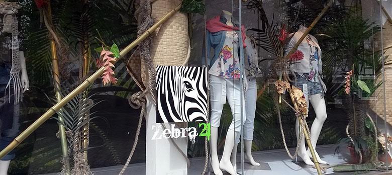zebra21